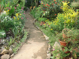 Garden pathway