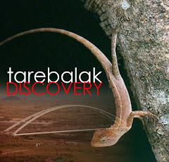 Tarebalak Discovery