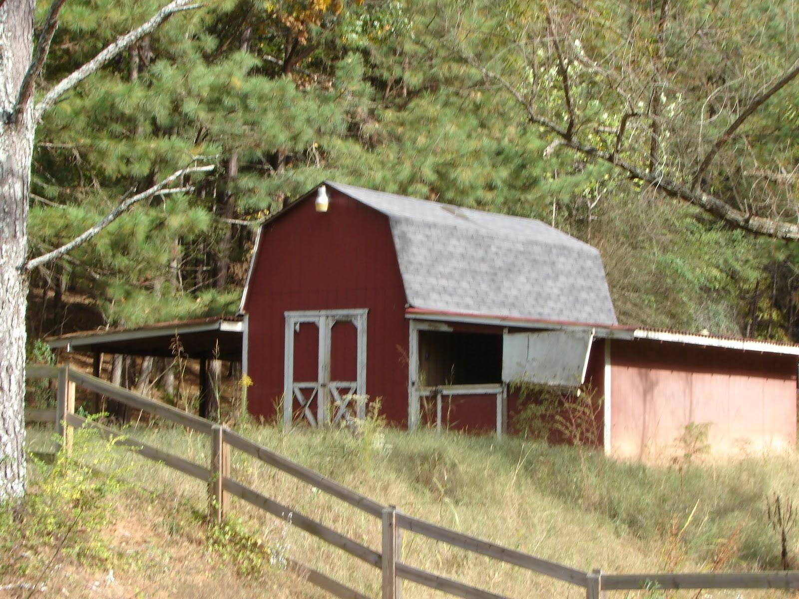 Real 2 Stall Horse Barn