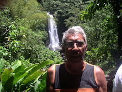 DOMINICA 11. Catarata fria