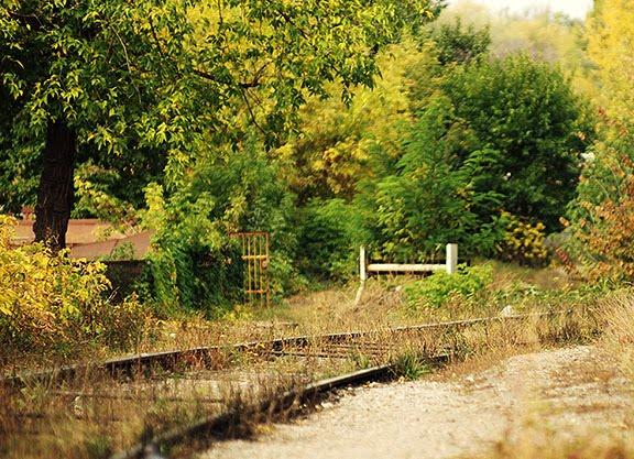 autumn fall railroad deadend осень железная дорога тупик