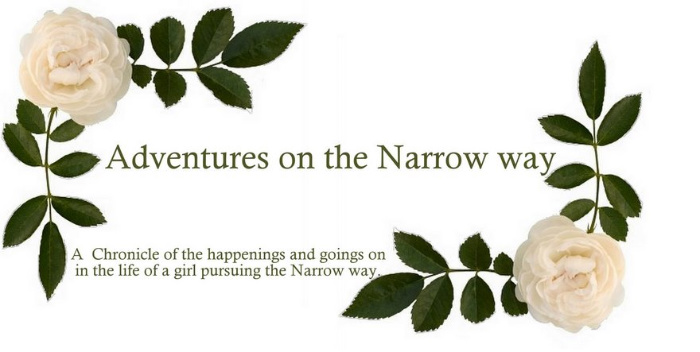 Adventures on the Narrow Way