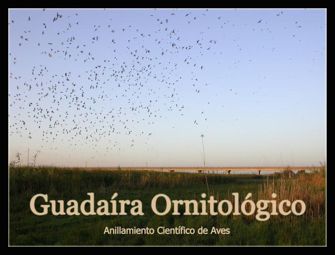 Guadaíra Ornitológico