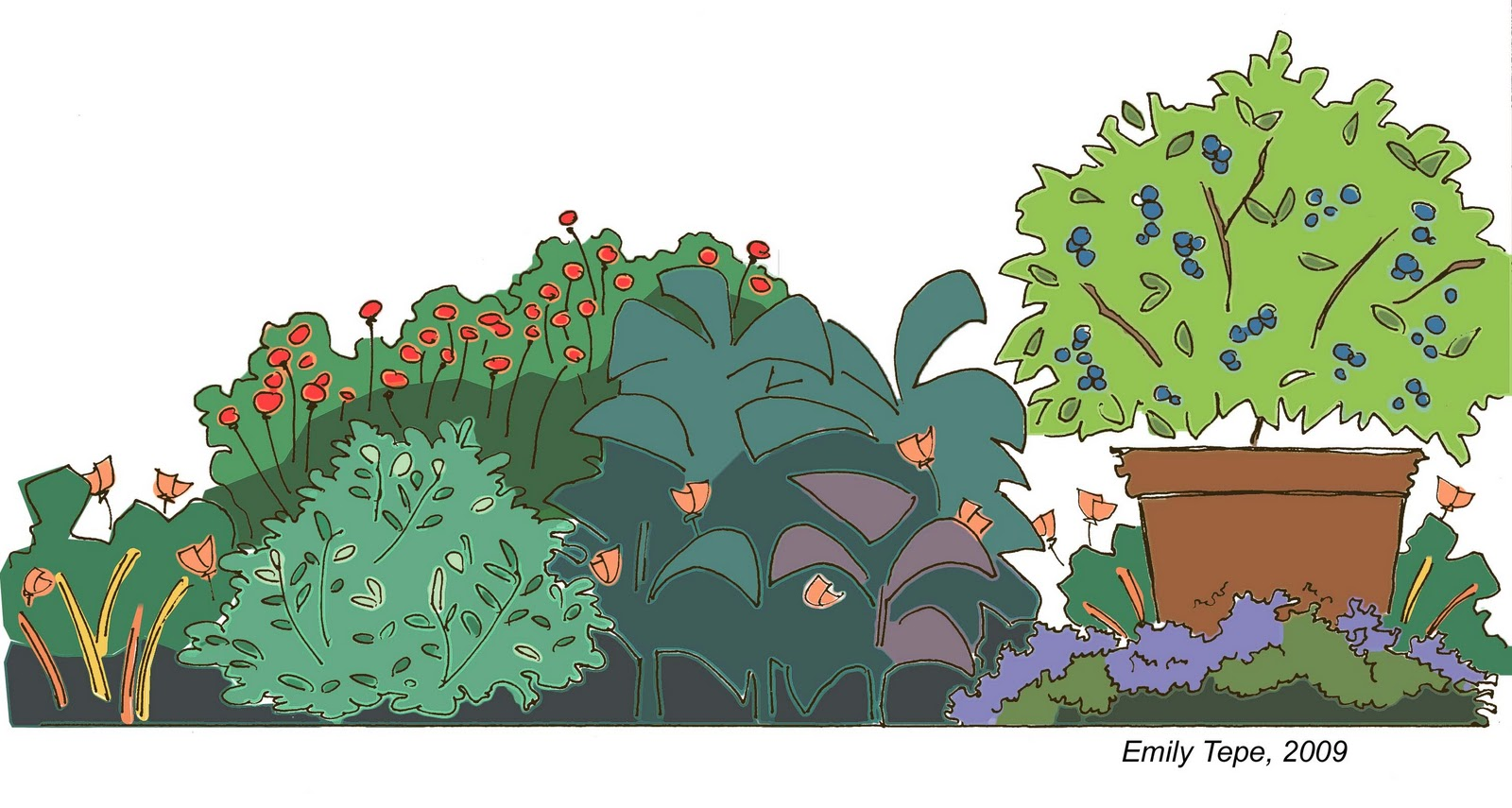 In Addition To Drawing Garden Plans Sketches Of Groups Plants Based On Average Plant Shapes And Heights Can Help Visualize How The Will Look
