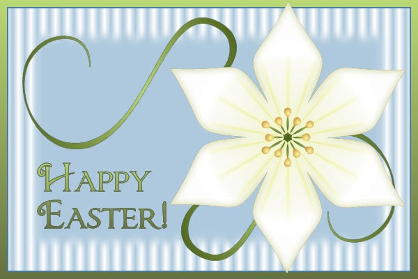 Don 39 t Eat the Paste Easter Lily