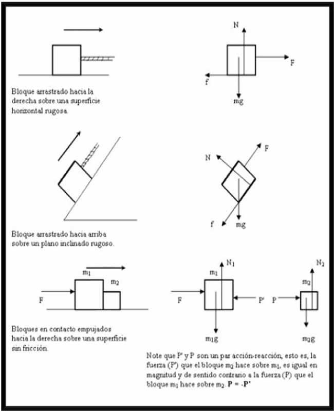Fisíca de 3ro y 4to semestre: Diagrama del cuerpo libre