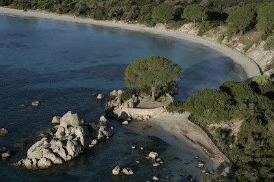 palombaggia plage corse