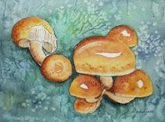 """Mushroom Family"""