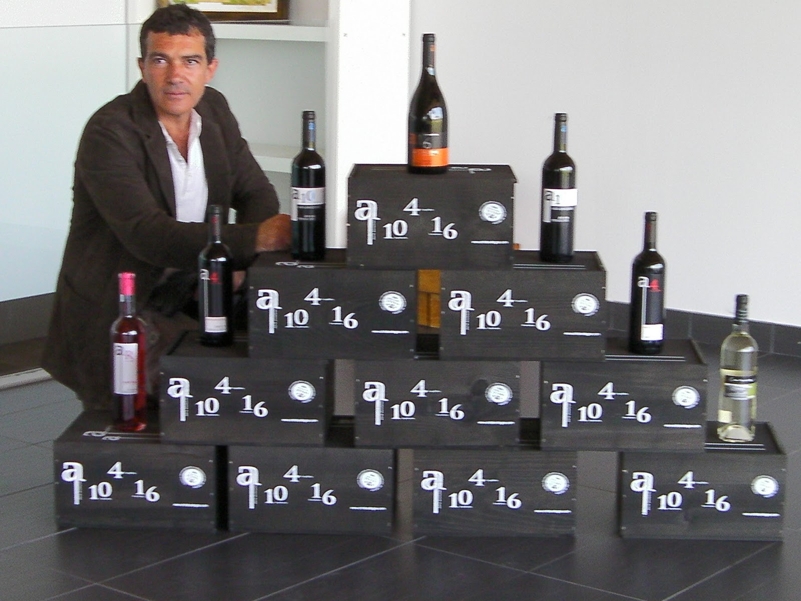 http://3.bp.blogspot.com/_iuCXeFKfFtc/TE4y2YfzGVI/AAAAAAAAAwU/boMcrSWWqXA/s1600/ANTA_BANDERAS_S_L_-winery4.jpg