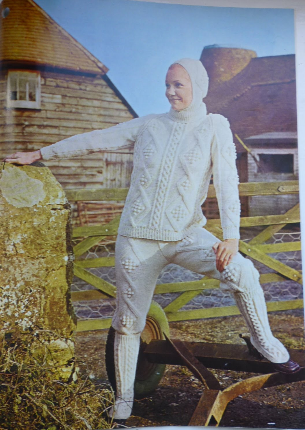 Funny Knitting Patterns : Kestrel makes a find but not make