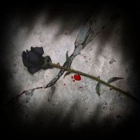 Black Roses line the dying