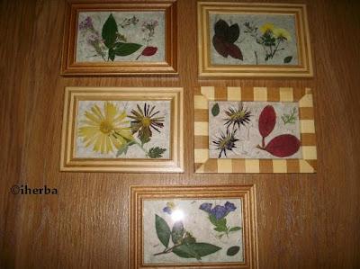 Pedido de habitaciones - Página 2 Cuadros+floresecas+mayores