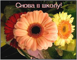Как работает ашан в праздники в москве