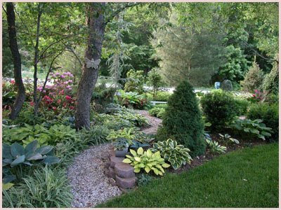 The reel news front yard landscaping ideas for Landscaping ideas for wooded areas
