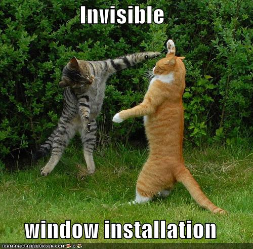 funny cat quotes. bushmaster acr wallpaper.