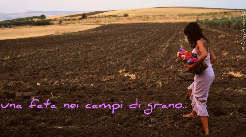 una fata nei campi di grano...