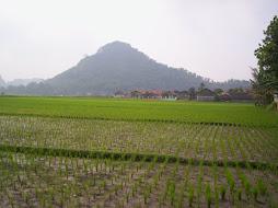 Ketegaran gunung patut di contoh tak pernah goyah walaupun ada gempa bumi