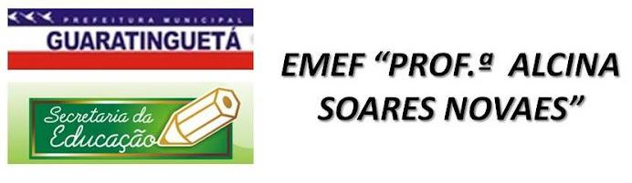 """E.M.E.F. """"Profª. Alcina Soares Novaes"""""""
