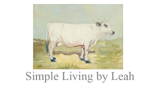 Simple Living By Leah