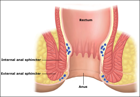 What causes anal sphincter damage? Fecal