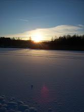 Vinterbild vid vänerns strand.