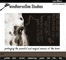 windhorseOne website