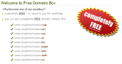 Cara Dapat Domain .com Gratis Dari Freedomainbox