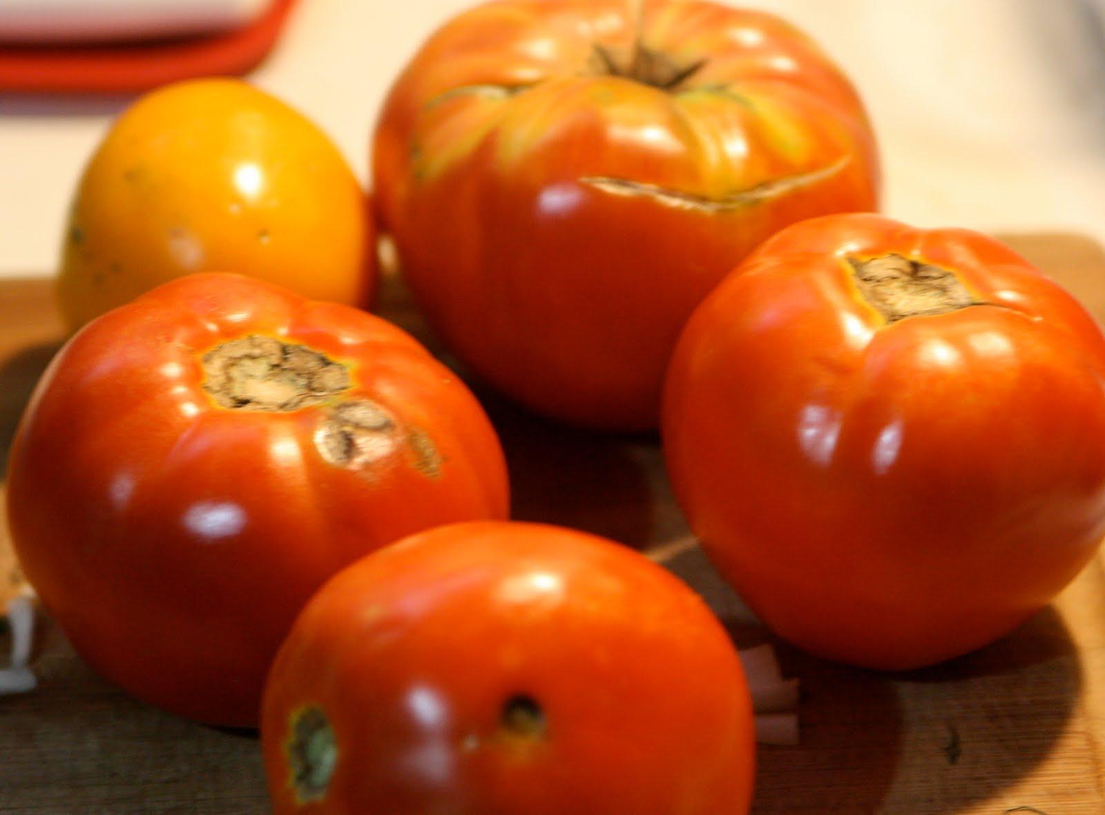 vegetable broth soup recipe gnocchi tomato basil soup tomato gnocchi ...