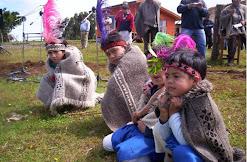 niños mapuche