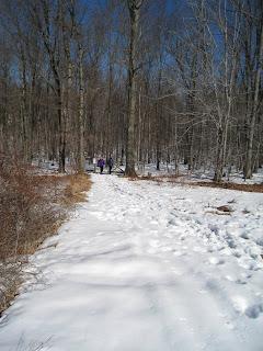 Randolph Township hike