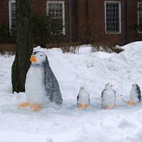 Snow Penguin: Food Coloring as a Snow Sculpture Dye
