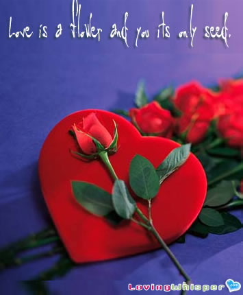 Love Quotes  Cards on Mis Carriage  Love   Khalil Gibran