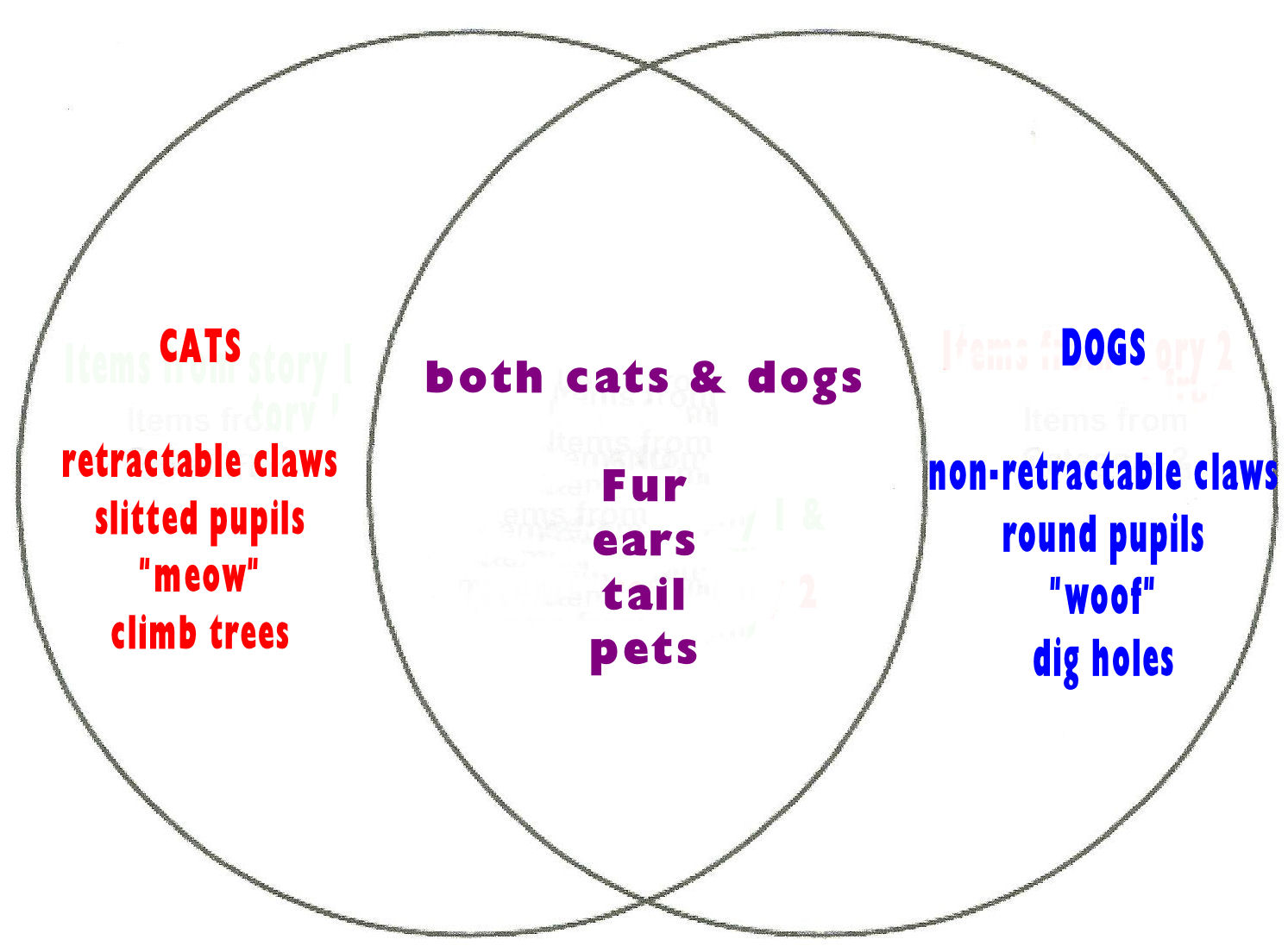 compare dogs and cats essay