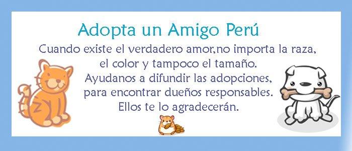 Adopta un Amigo Perú