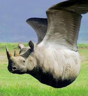 http://3.bp.blogspot.com/_jEwL4I5g1WQ/TBhkEytVeQI/AAAAAAAAA6g/UGMXrnDG5zA/s320/Badak-Terbang.jpg