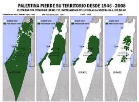 Medio siglo de Holocausto Palestino
