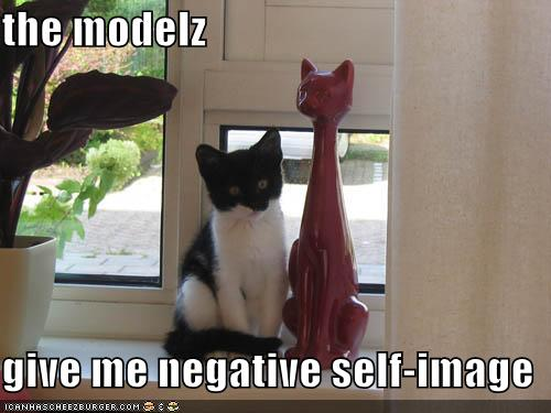 [funny-pictures-self-image-cat.jpe]