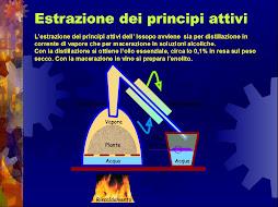ITIS MARIE CURIE.. una Scuola UNIVERSITARIA del futuro MILANESE e SANREMESE!