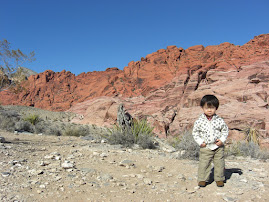 Looking cool at Red Rock Canyon