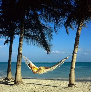my picture is of someone laying in a hammock on a beach  this symbolizes my definition of leisure because the person in the picture is relaxing and not     frog blog  assignment 1   leisure definition  rh   frogblogrst blogspot