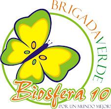 Brigada Verde Biosfera 10