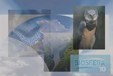 Proyecto Integral de Periodismo Ambiental BIOSFERA 10