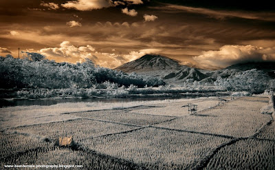 History of Infrared Photography, Infrared Photography