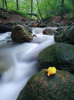 Landscape Photography, Photography Tips, baeutiful landscape