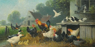 illustration-ancienne-poule-volaille-basse-cour-animaux-ferme