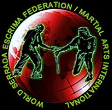 WSEF Logo