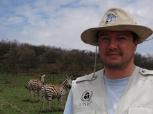 En un paso Zebra