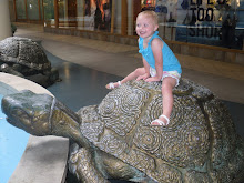 SHE LOVES THE TURTLE FOUNTAIN AT RIDGMAR MALL!