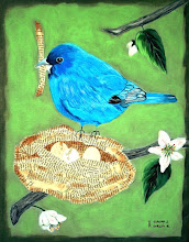 Indigo Bunting on nest