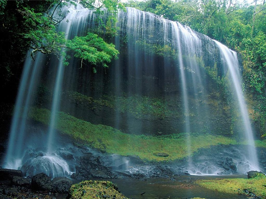 http://3.bp.blogspot.com/_jQ3UQHUyye8/TC9GWla3VqI/AAAAAAAAAyc/k7STbxg2dwM/s1600/Waterfall,_Palau,_Micronesia.jpg